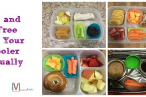 Healthy Lunches Your Preschooler Will Actually Eat