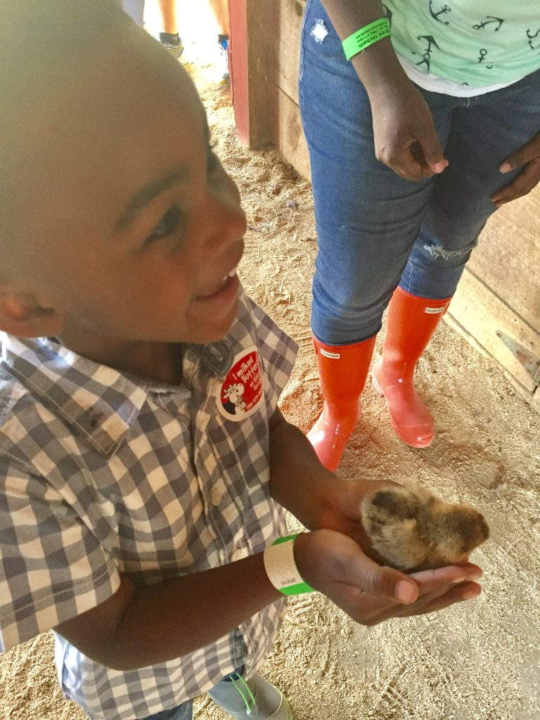 He held a baby chick :)