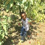 How Apple Picking Helped My Family Reset, Plus 5 Tips For Planning Your Own Family Reset Day